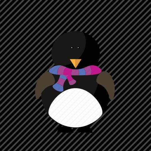 animal, christmas, cute, penguin, pole icon