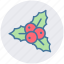 celebration, christmas, decoration, holiday, mistletoe icon