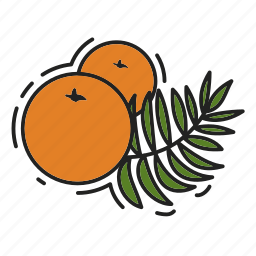 christmas, christmas tree, oranges, xmas icon