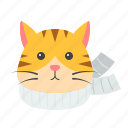 animal, cat, christmas, pet, scarf, xmas icon