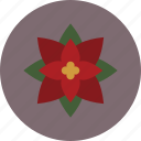 christmas, december, flower, poinsettia, winter icon