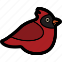 animal, bird, cardinal icon