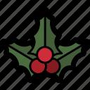 christmas, holiday, holly, mistletoe, winter icon