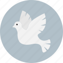 bird, christmas, dove, peace icon