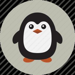 animal, penguin, winter icon