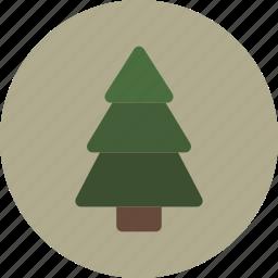 pine, tree, winter icon
