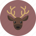 animal, head, reindeer icon