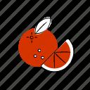christmas, food, oranges, snow, winter, xmas icon