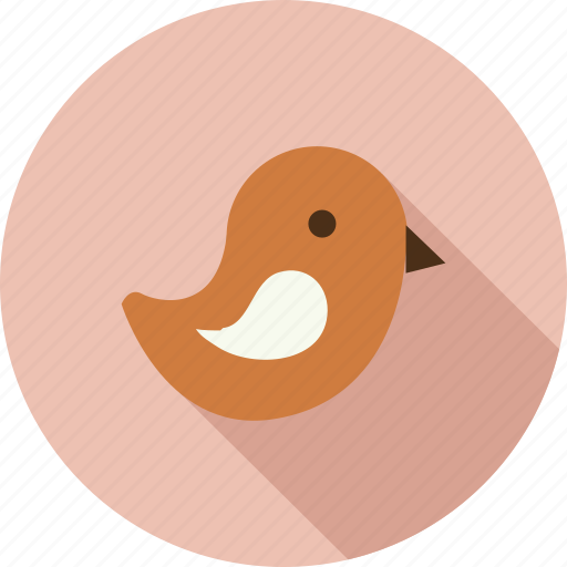 bird, tweet icon