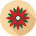 christmas flower, flower, flowers, red flower icon
