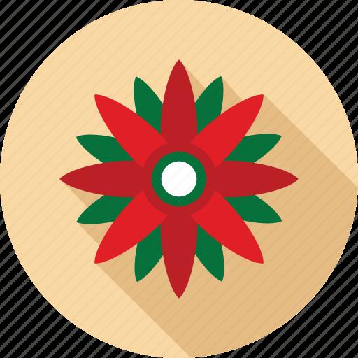 christmas flower, flower, flowers, red flower icon