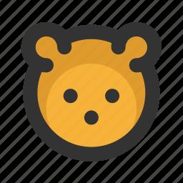 bear, christmas, xmas icon