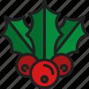 mistletoe, berry, leaf, christmas, nature, plant, holly