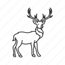 red nosed reindeer, rudolph, deer, reindeer, sleigh, holiday, christmas icon