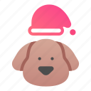 christmas, hat, happy, warm, dog, cute icon