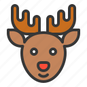 animal, christmas, deer, reindeer, xmas icon