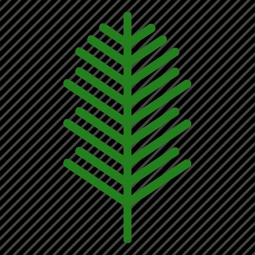 christmas, decoration, leaf, nature, pine icon