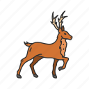 sleigh, reindeer, deer, animal icon