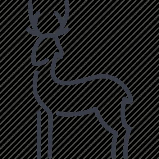 celebration, christmas, deer, holiday, xmas icon