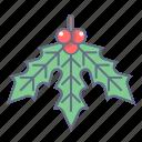 celebration, christmas, holiday, mistletoe, nature, plant, xmas