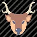 animal, christmas, deer, santa, winter, xmas icon
