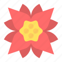 christmas, decoration, floral, flower, holiday, plant, xmas icon