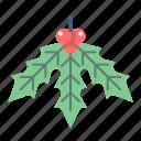 christmas, decoration, holiday, mistletoe, plant, xmas