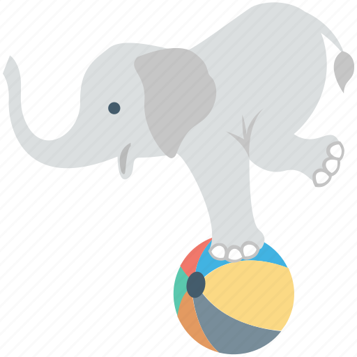 animal, ball, circus elephant, elephant show, elephant taming icon