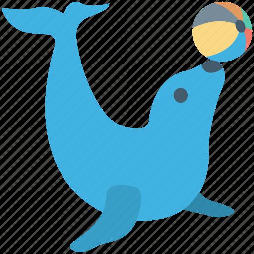 animal, circus seal, circus show, circus trick, sea lion icon