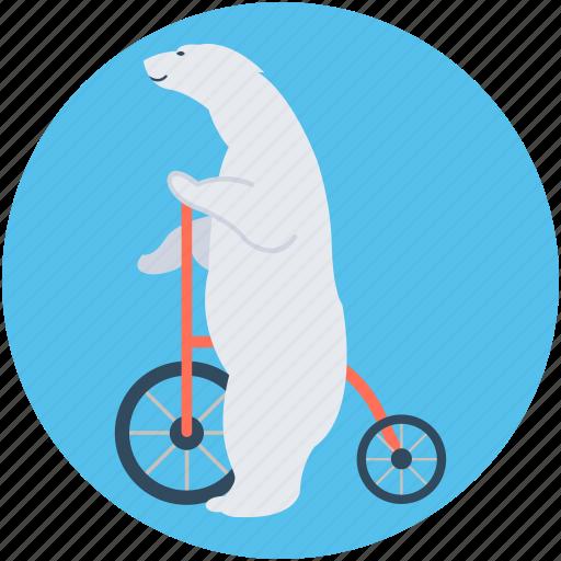 animal, bike, circus animal, circus bear, circus show icon