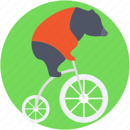 animal, bike, circus animal, circus bear, circus show icon