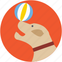 animal, ball, circus dog, fairground, fun icon