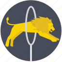 circus, fire hoop, hoop, lion, lion jumping icon