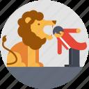 circus lion, circus trick, enjoyment, entertainment, performance