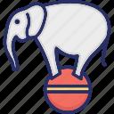 animal, ball, circus elephant, elephant show, elephant taming icon