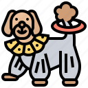 animal, circus, dog, show, trained icon