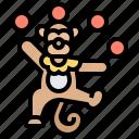 animal, juggling, monkey, show, trained