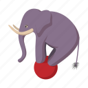 ball, circus, zoo, animal, elephant, balance, cartoon