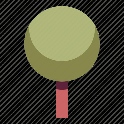 nature, park, plant, spherical, tree icon