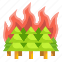 burning, conflagration, disaster, fire, forest, tree icon
