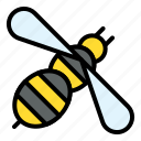bee, bug, climate, insect, swarm icon