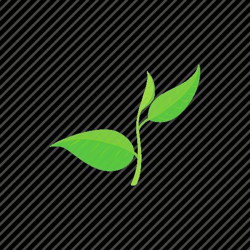 branch, cartoon, flora, growth, leaf, plant, tea icon