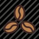 arabika, beans, cafe, coffee, coffee shop, drink, robusta