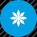 ice, snow, snowflake, star icon
