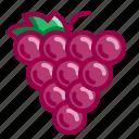 flavor, fruits, grape, grapes, purple, wine icon