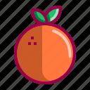 acid, citric, flavor, fruits, juice, orange, sweet icon