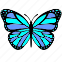 blue, butterfly, wings, violet