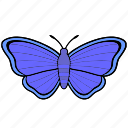 butterfly, insect, violet, wings icon