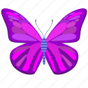 butterfly, insect, violet, wings