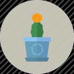 cactus, desk, florist, flower shop, flowerpot, pot icon